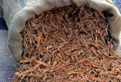 Indian Sandalwood Fragrance Oil